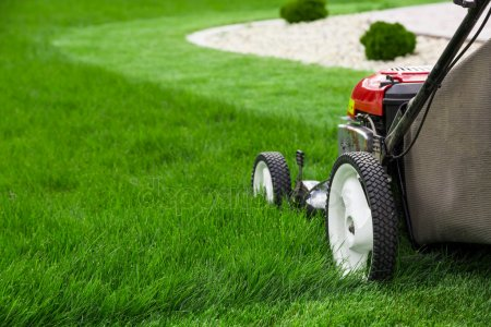 NDIS Law Mowing